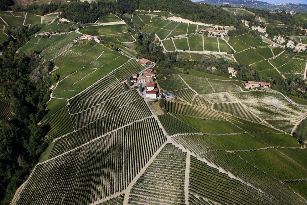 paolo conterno - Piedmont, IT