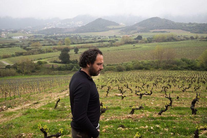 Nicolas Mariotti bindi - Corsica, FRA