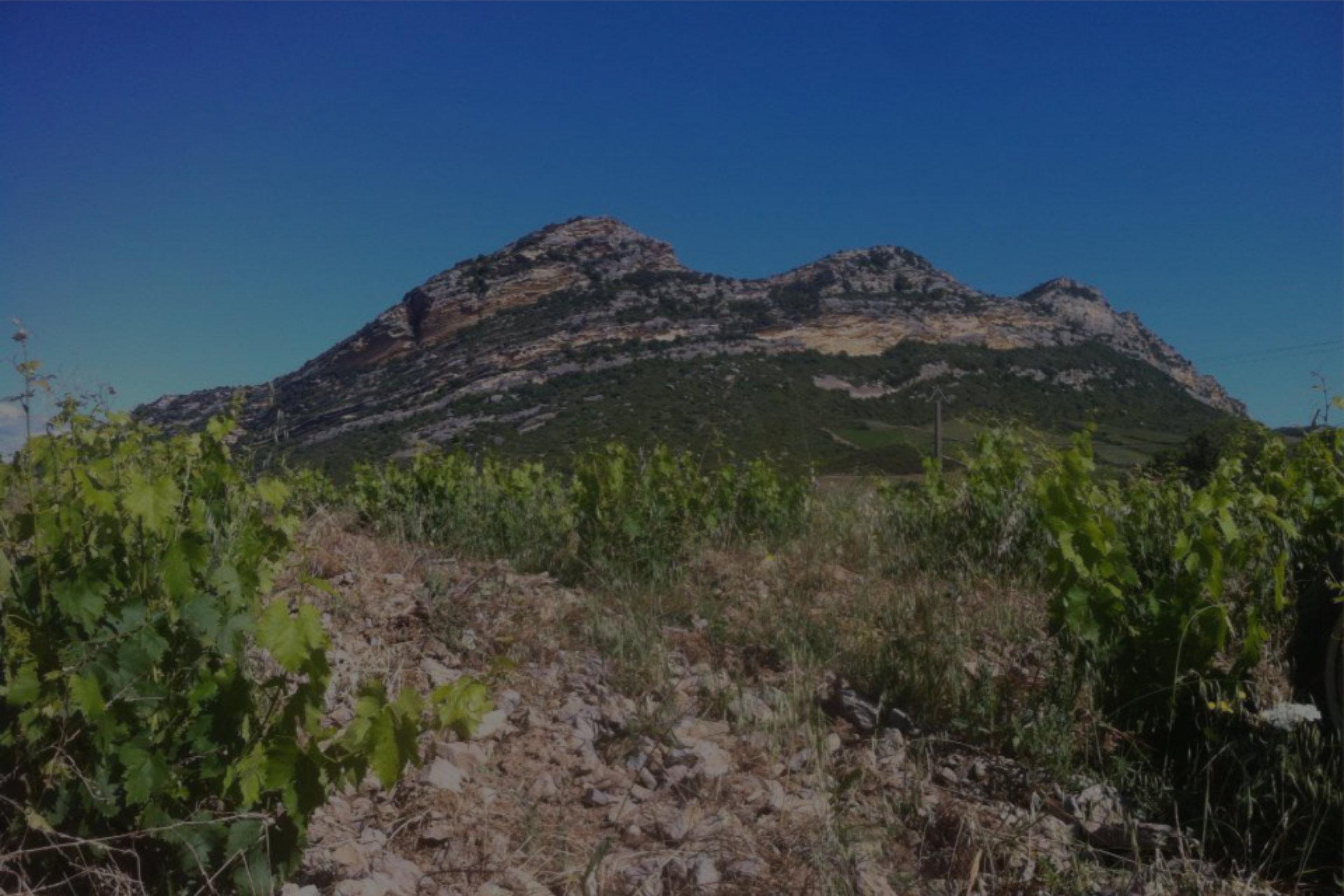 Clos Signdore [Corsica, FRA]