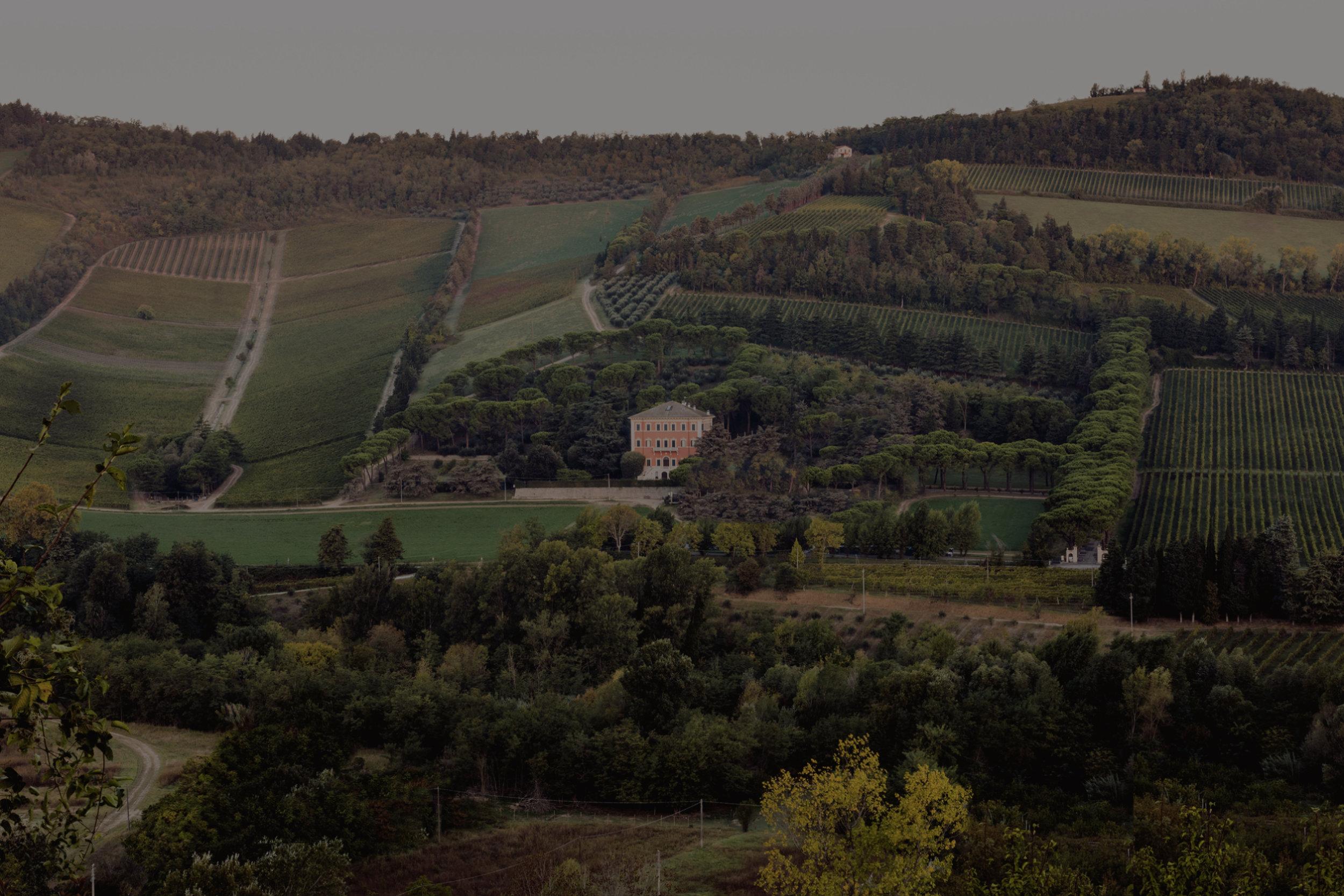 Pandolfa [Romagna, ITA]