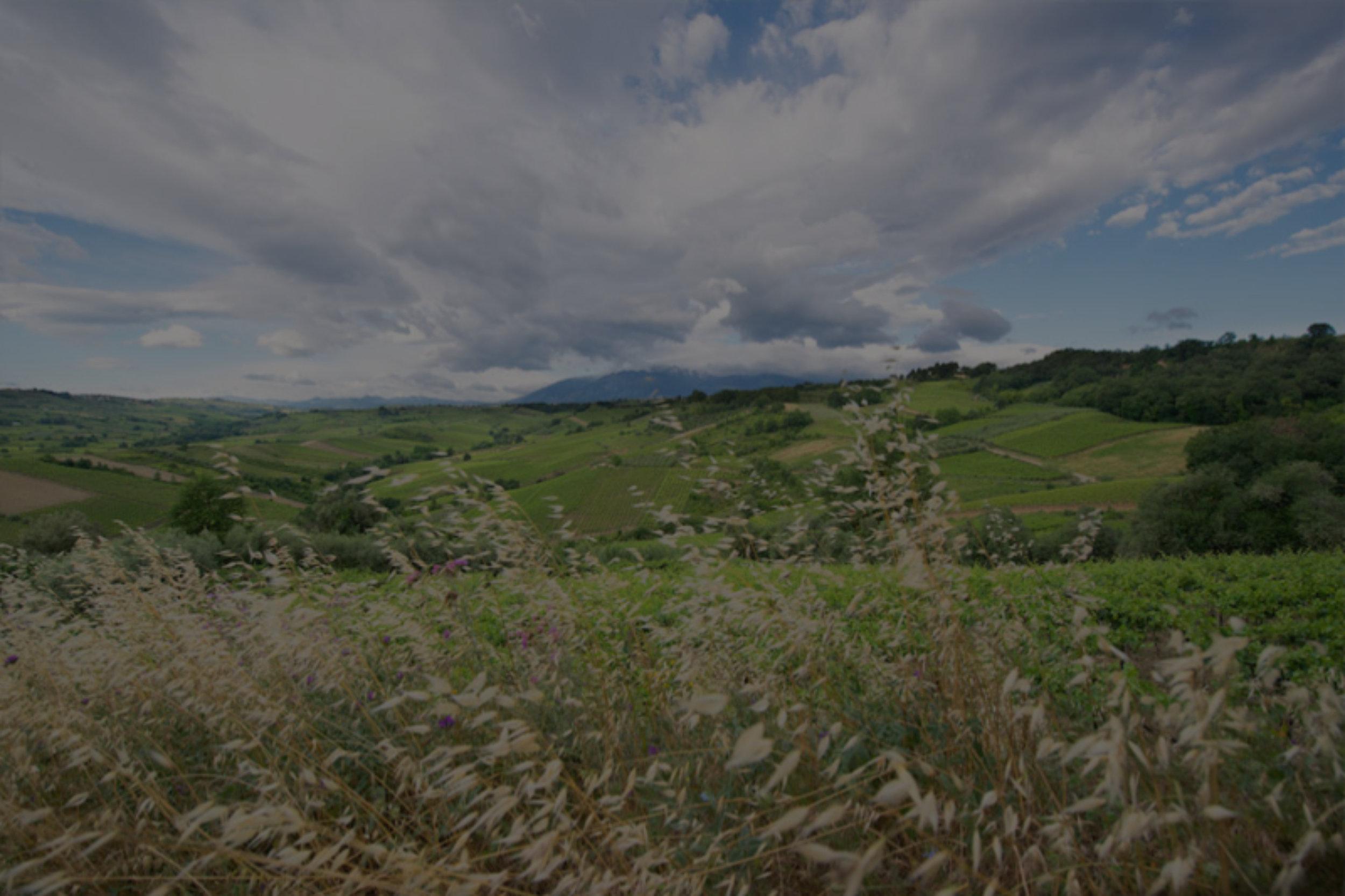 Feudi Bizantini [Abruzzo, ITA]