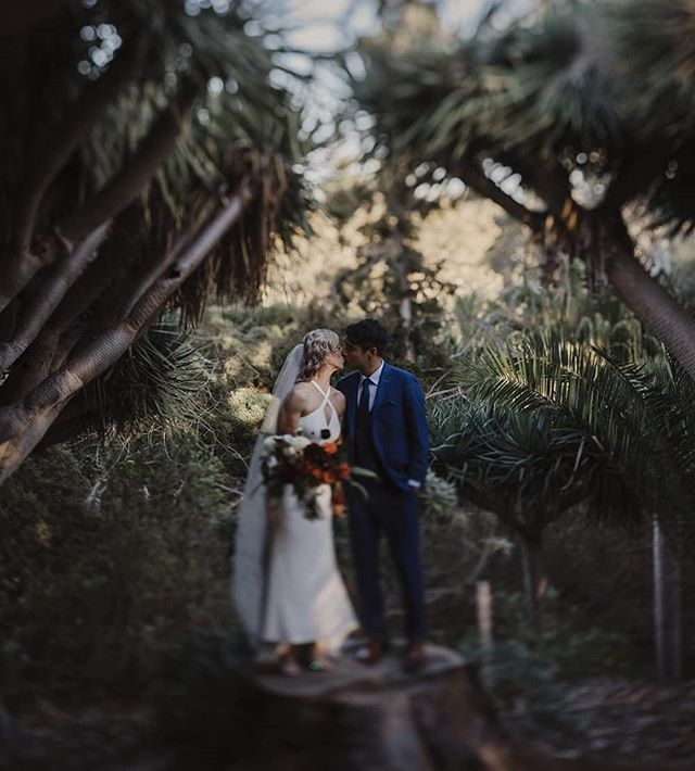 Mike + Hillary at the San Diego Botanical Gardens . . . . . . . . . #weddingphotographer#oncewed #junebugwedding#weddingchicks#destinationwedding#destinationweddingphotographer#bride#groom#engaged#weddingdress#californiaweddingphotographer#weddingphotography#weddinginspiration#theknot#junebugweddings#oncewed#adventureelopement#realweddings#ruffledblog#intimateelopement#weddingdress#engagementphotos#weddingday#ifyoulikeitputaringonit #OCweddings #LAweddings #SanDiegoweddings #weddingcake #weddingstory