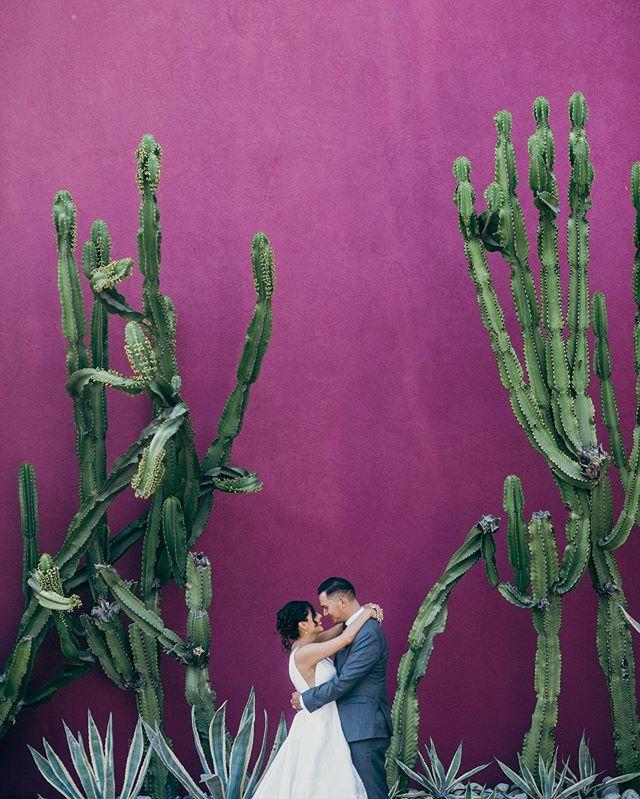 Lucas + Paola's Long Beach wedding @lucascapili @pao_pao_pri05 . . . . . . . . . #losangelesweddingphotography #losangelesweddingphotographer #southerncaliforniaweddingphotographer #longbeachwedding #longbeachweddingphotography #love#longbeachweddingphotographer #weddingphotography #wedding #engaged #weddingphotographer #photobugcommunity #raggedpoint #loveandwildhearts #losangeleswedding #authenticlovemag#wanderingphotographers #belovedstories #bigsurwedding #dirtybootsmessyhair #Belovedstories #Bridalmusings #californiaelopement #californiawedding #loveintentionally #bigsur #orangecountywedding #ocweddingphotographer