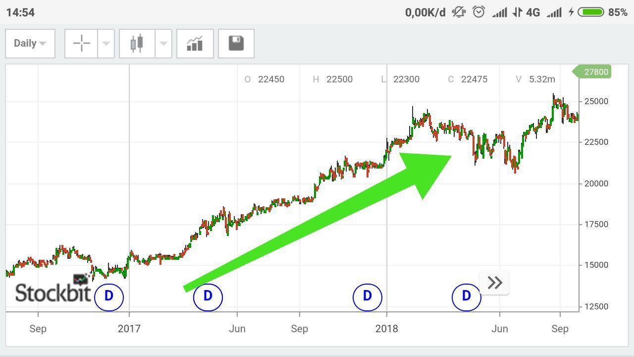 29. Bullish - Menunjukkan kondisi pergerakan harga saham yang cenderung naik dalam jangka waktu tertentu.