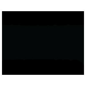 Brisbane BBQ Festival.png