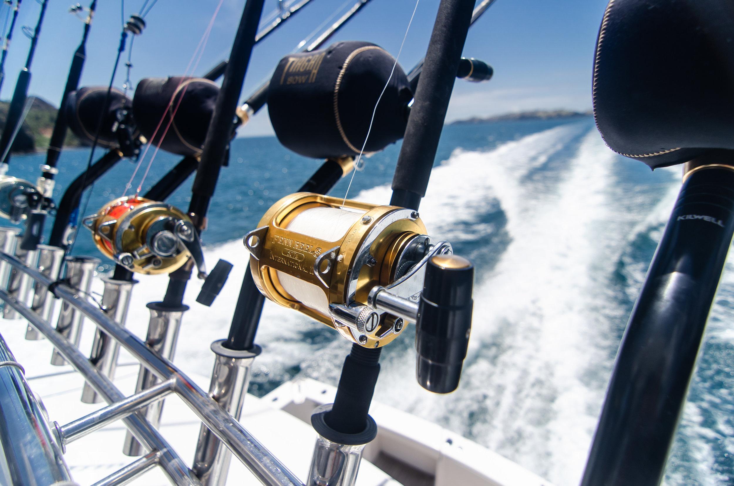 16_Marine Photography NZ.jpg