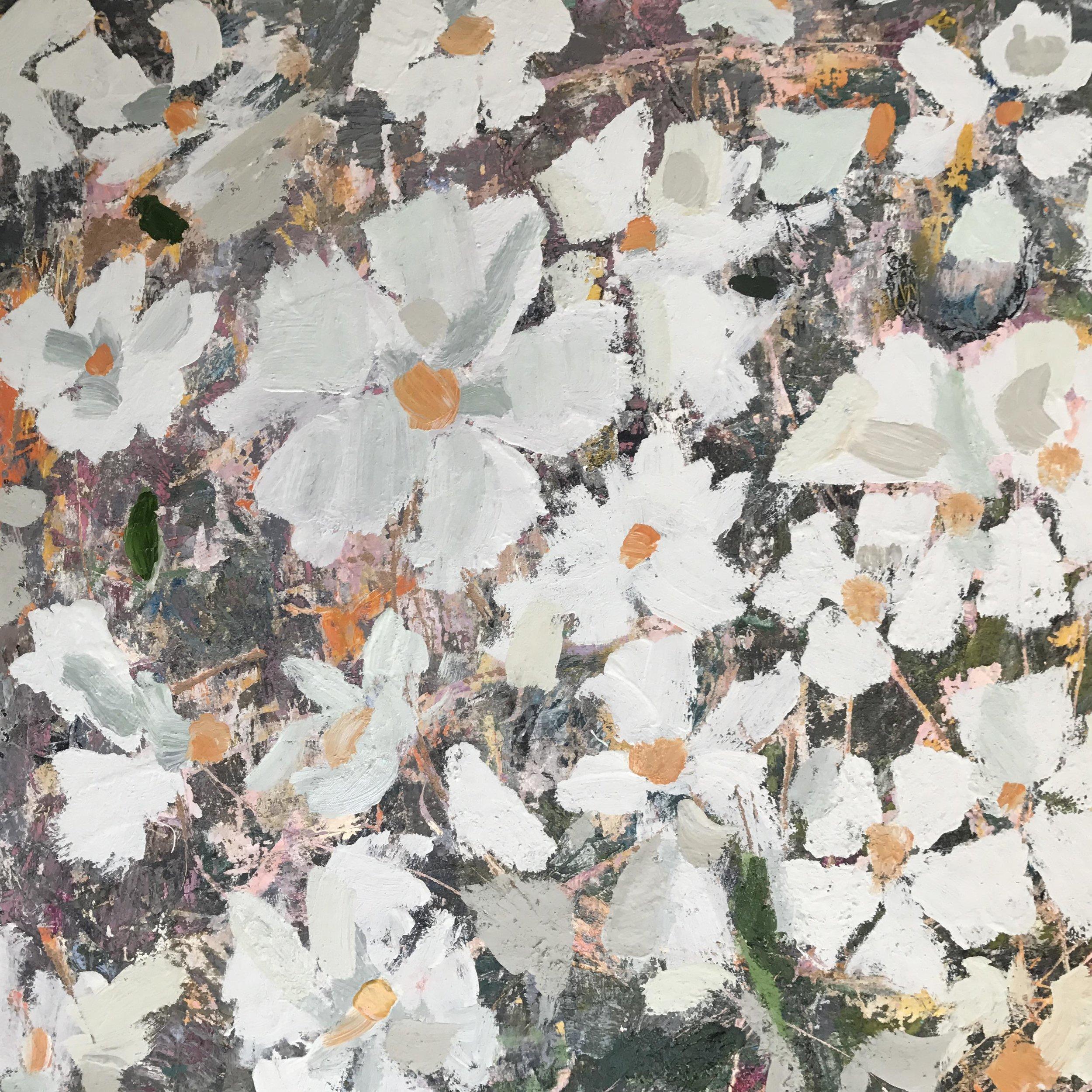 Lucy Zaroyko                 Fallen Rotten Blooming - 8 September - 30 September 2017