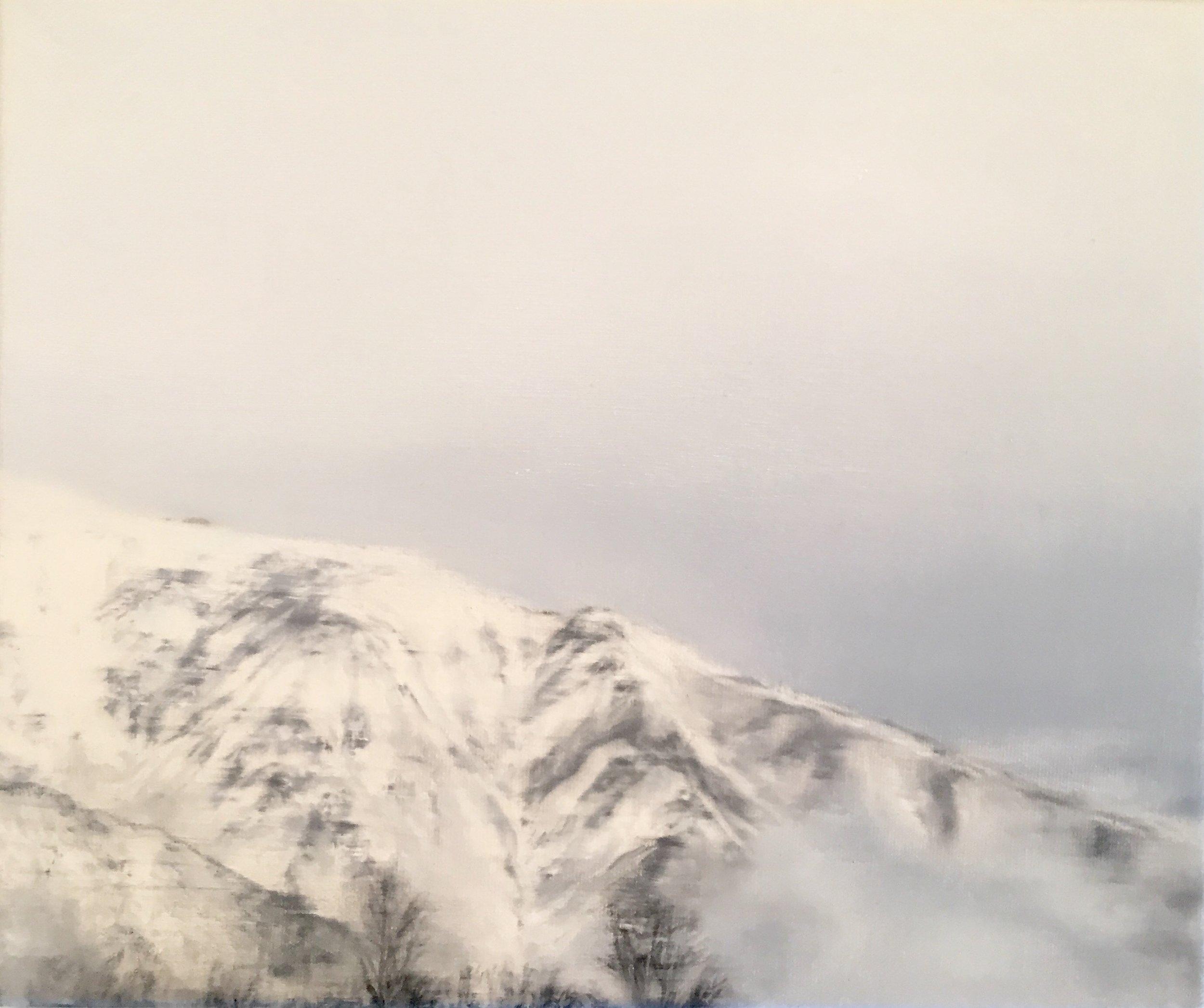 AMELIA CARROLL   image.61 , 2017  oil on canvas  25.5 x 30.5 cm