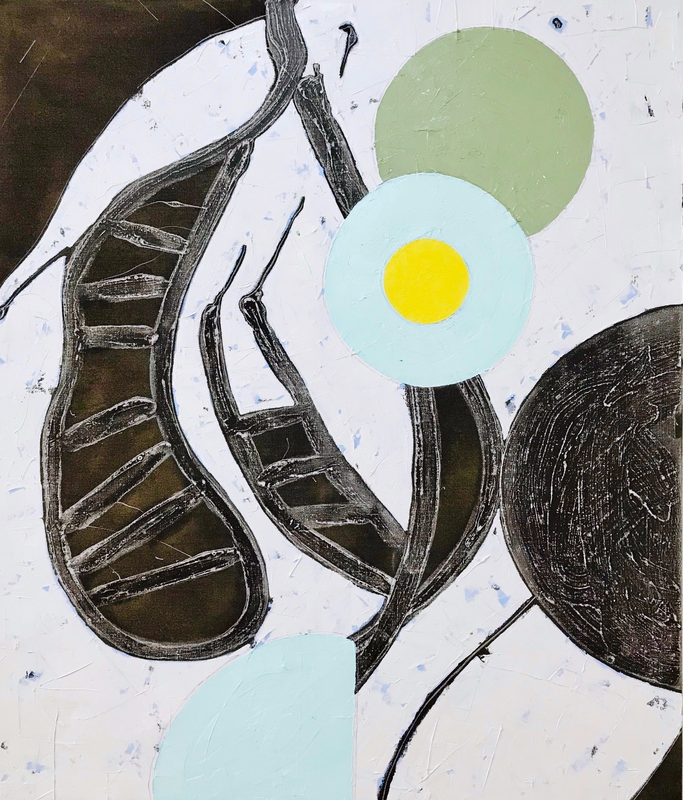 PETER SHARP  White Mallee Flower , 2018 oil and acrylic on linen 152 x 130 cm