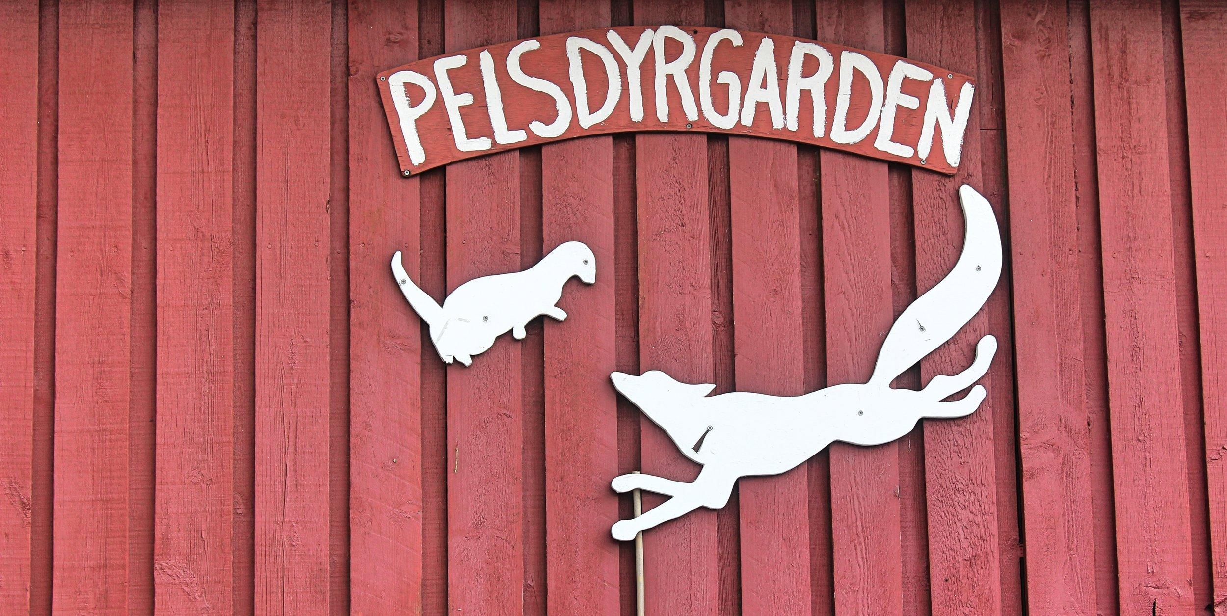 Pelsdyrgarden - Merete Guldhav.jpg