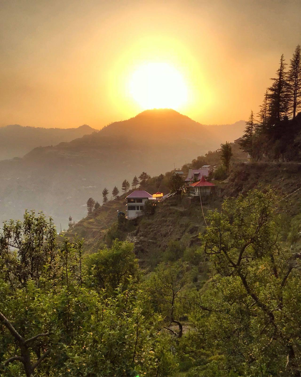 Himalayan Orchard — Vishoka Yoga