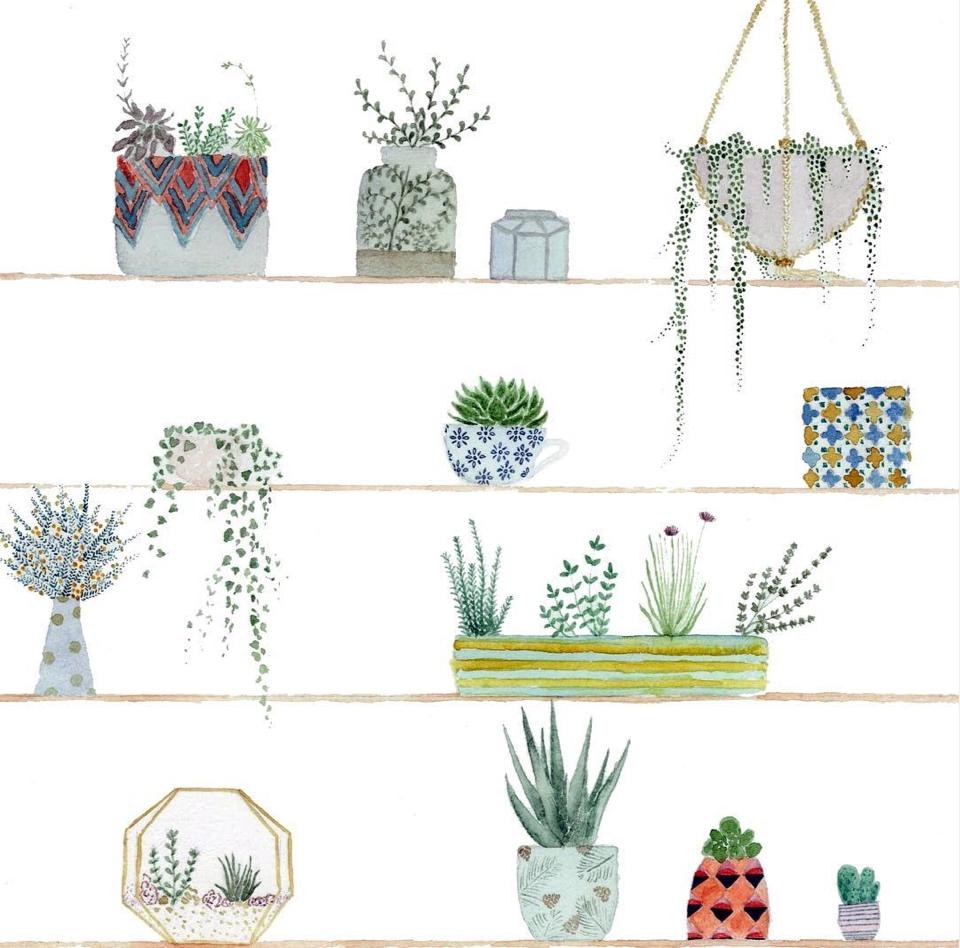 cati+shelf+6.jpg