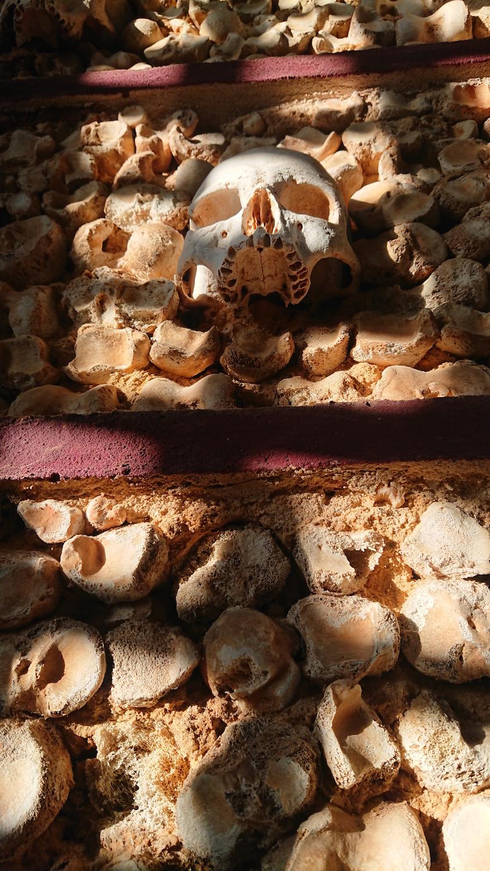 skulls wall.jpg