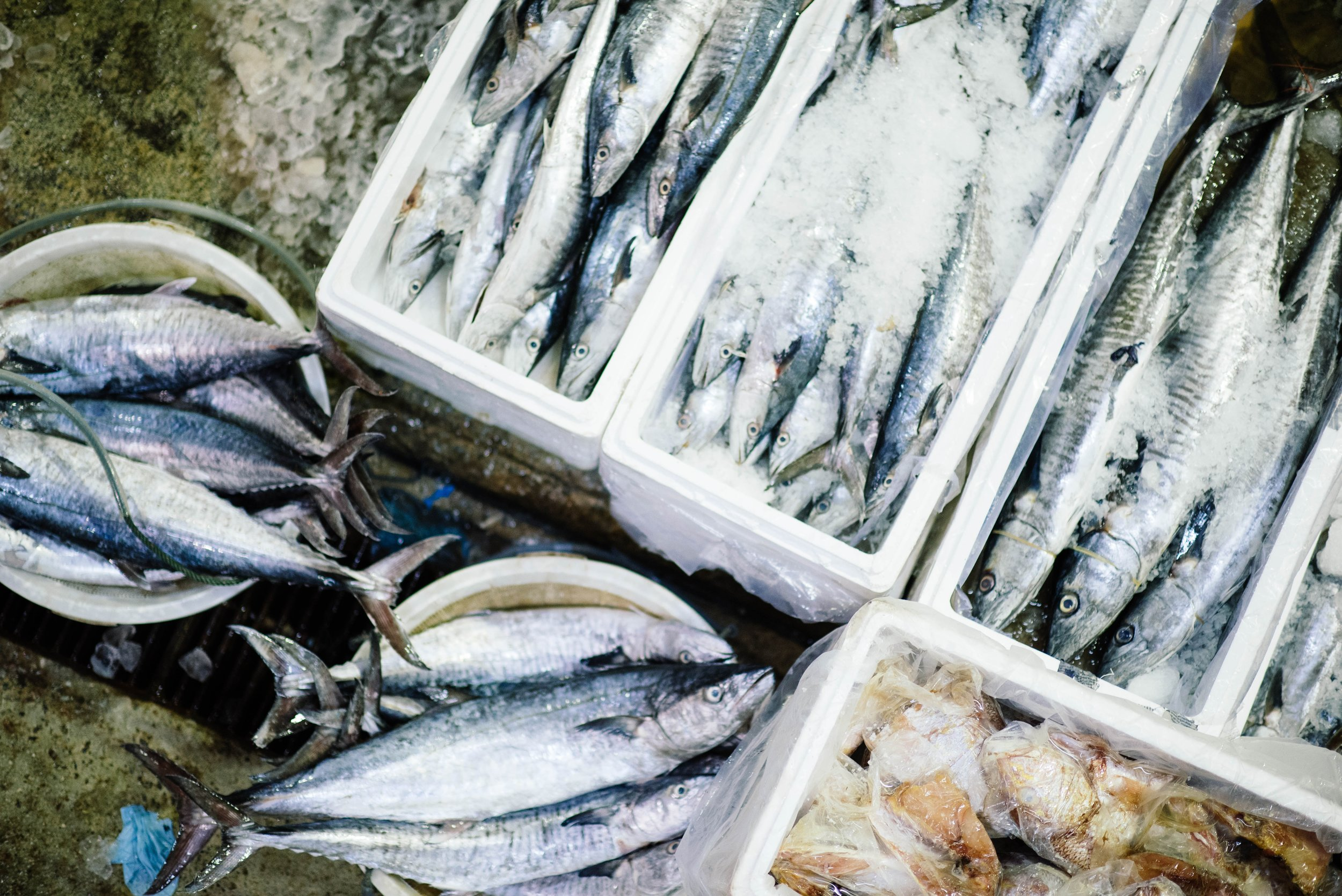 Pandobac s'intègre sur l'ensemble de la chaîne - Du producteur, agriculteur, éleveur, pêcheur, en passant par le grossiste, livreur, jusqu'au commerçant.