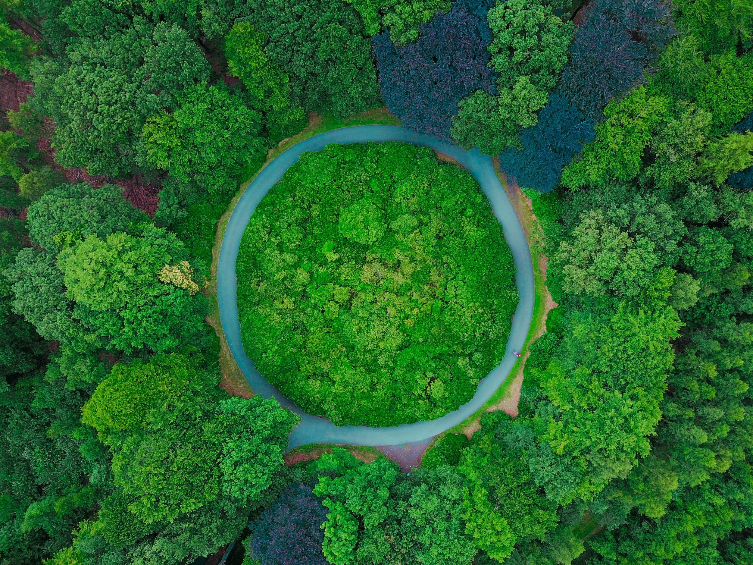 L'économie circulaire - Il s'agit de passer de modes de production linéaires et toxiques à des systèmes circulaires et résilients, grâce aux progrès de l'écoconception.