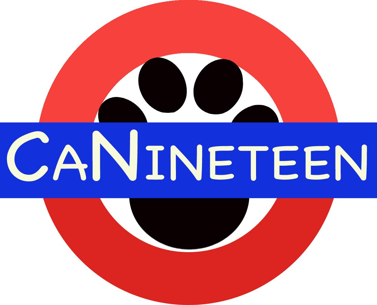 CaNineteen logo