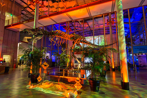 everything-audio-visual-venues-california-academy-of-science.jpg