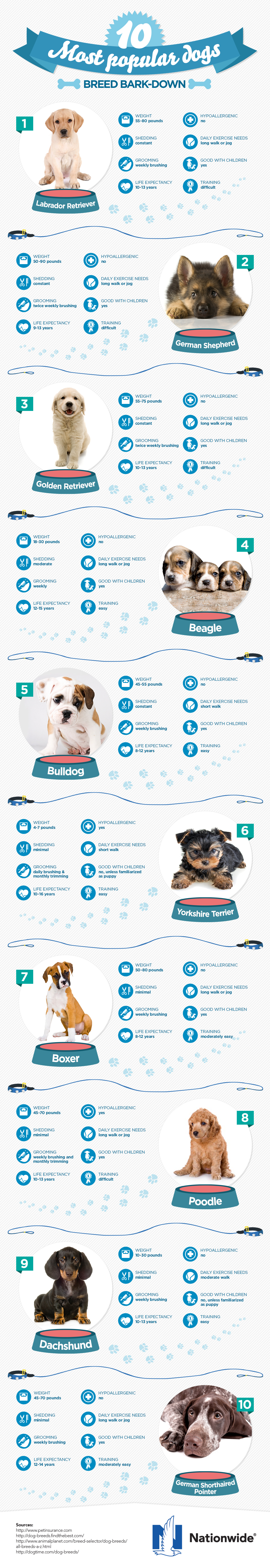 dog-breeds-final.jpg