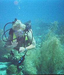 - Sheena is a certified SCUBA Diver