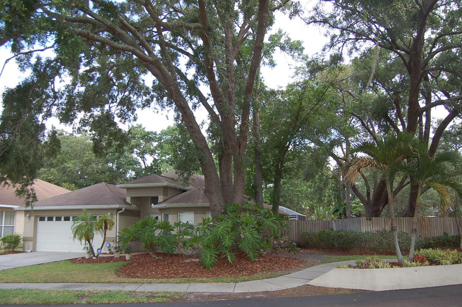 tampa-home-for-sale.jpg