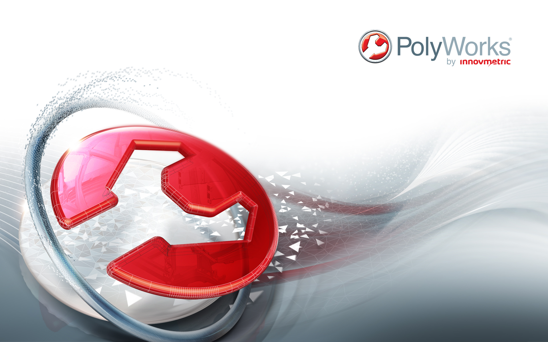 PolyWorks Training & Consulting