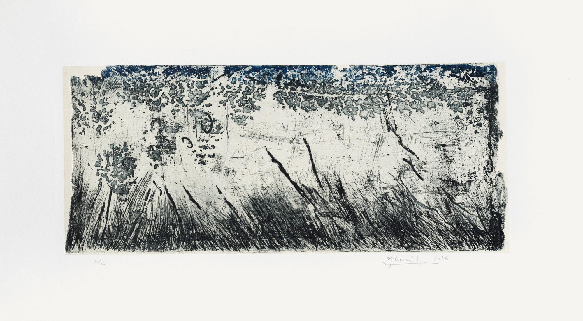 La mare au diable,  2016 Eau forte, pointe sèche et papier chine collé, 65x35 cm