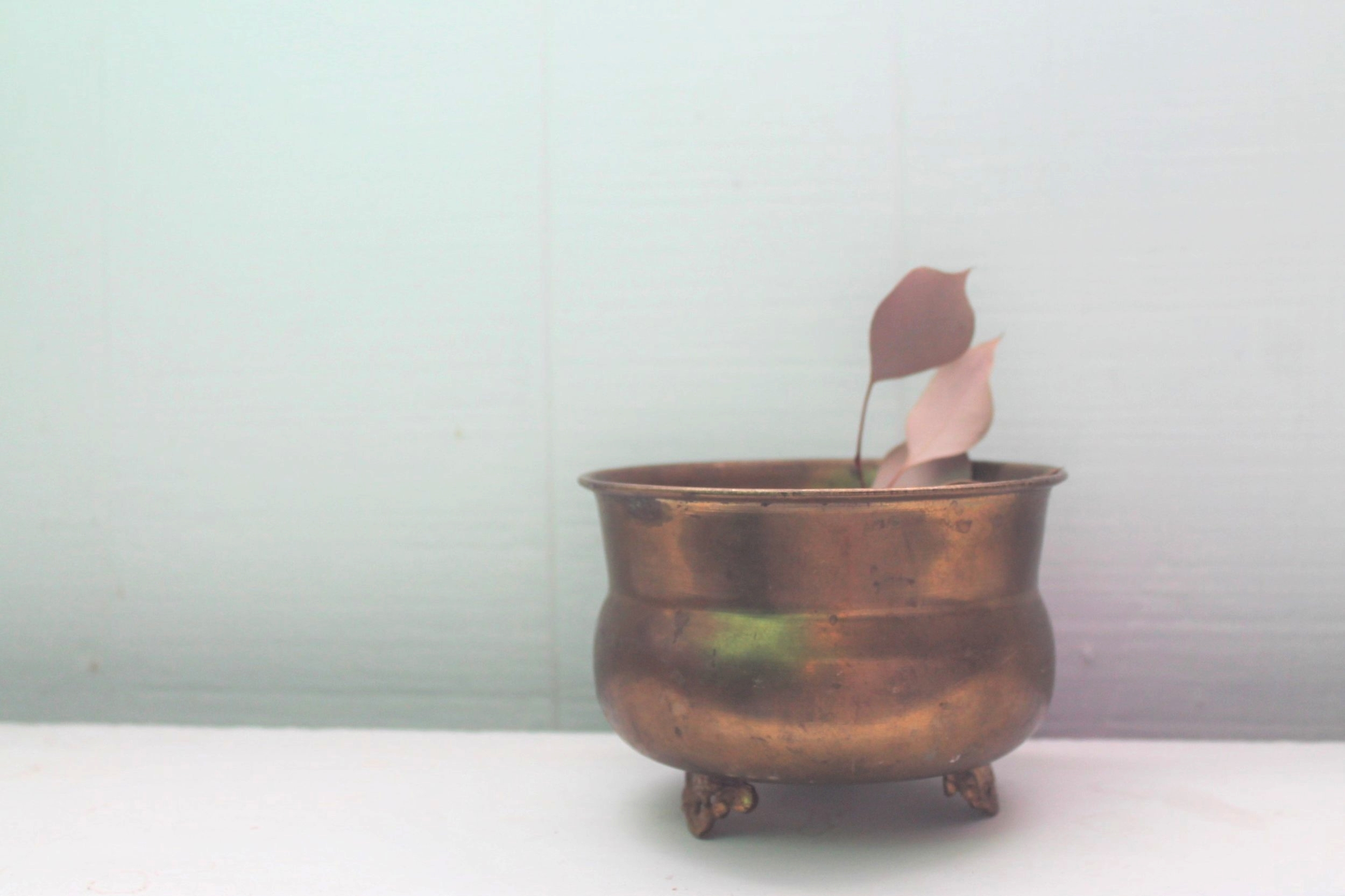 Brass Planter Vase3.00 -