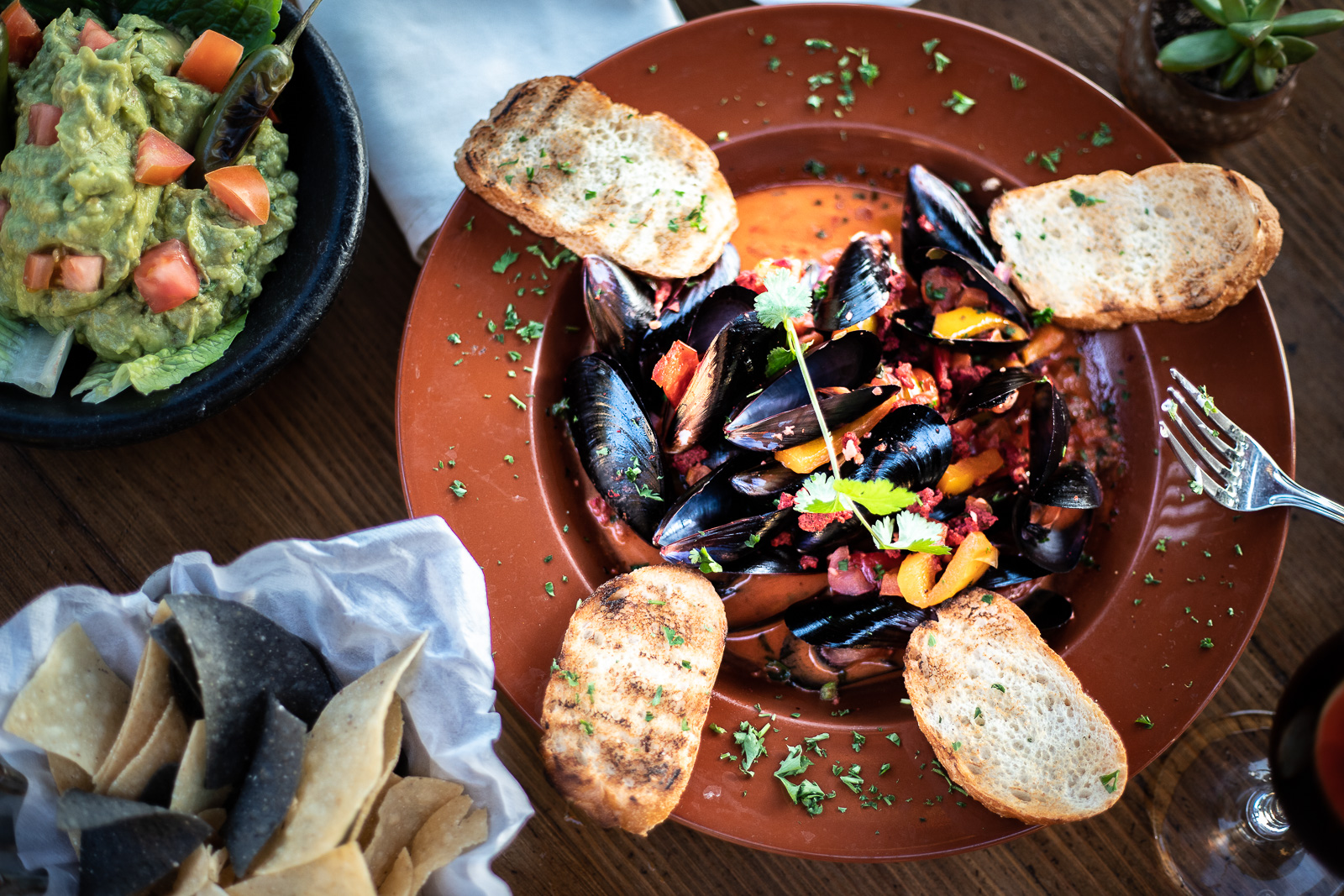 Bohemia Steamed Mussels