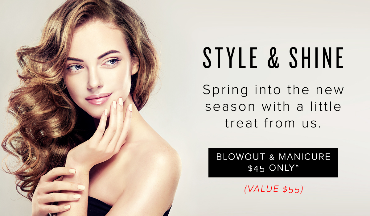 STYLE AND SHINE EMAIL HEADER.jpg