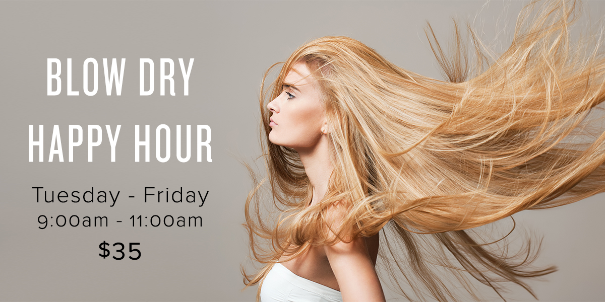 Blow Dry Happy Hour Email.jpg