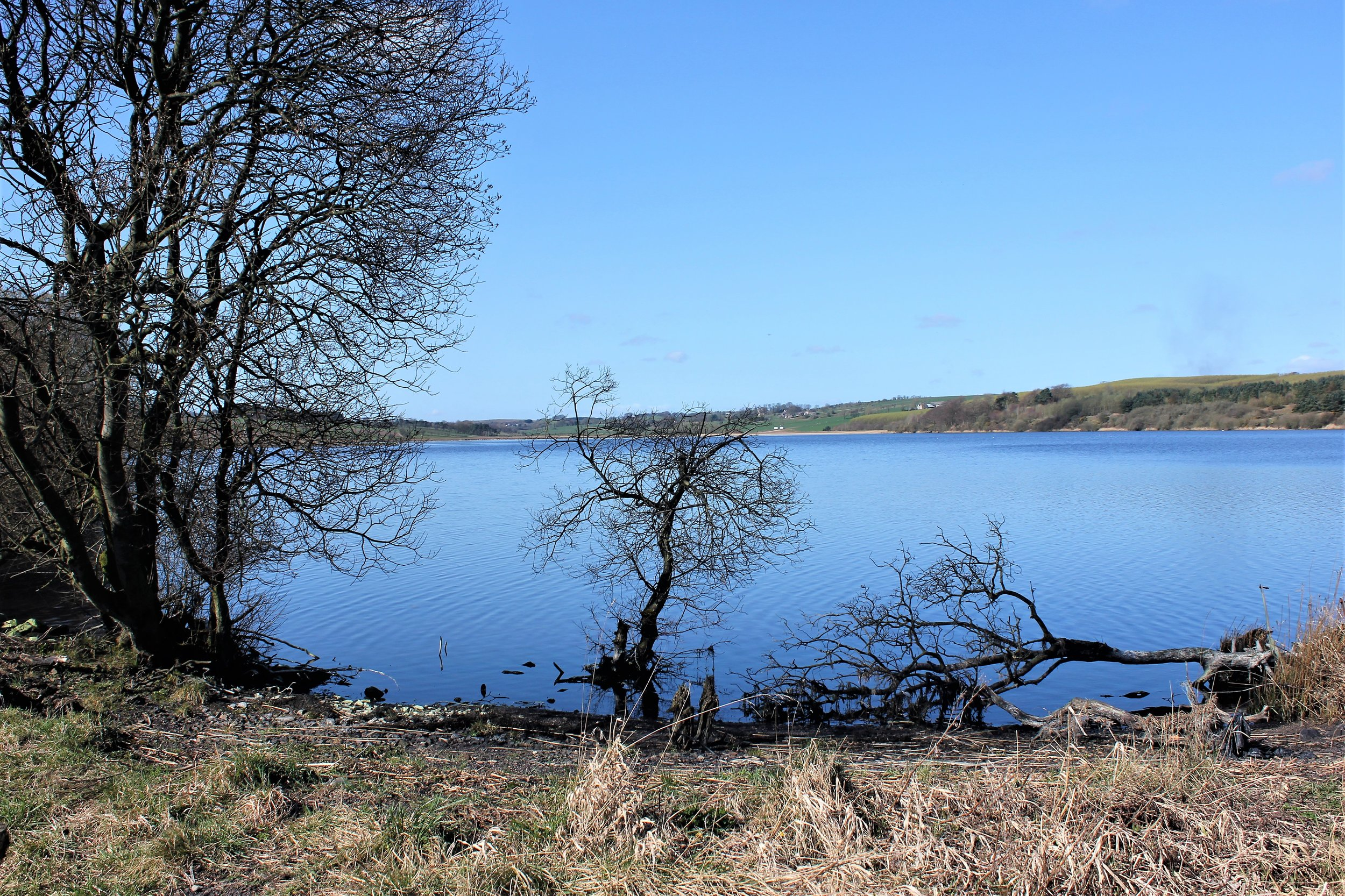 Loch Fitty