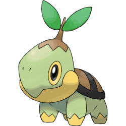 Pokemon Go Community Day_Turtwig.png