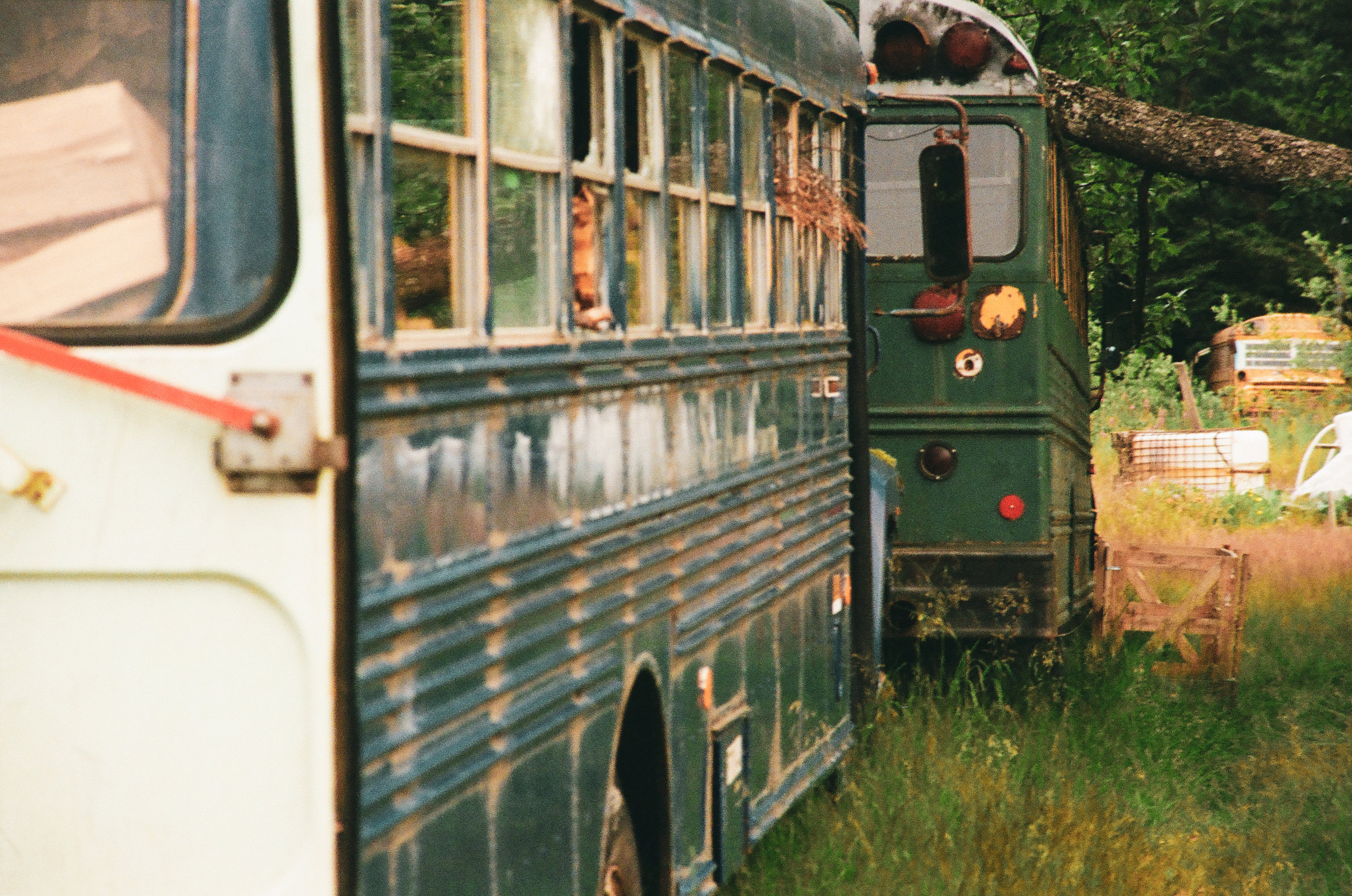 Abandoned Kodiak school system buses used for firewood and tool storage.