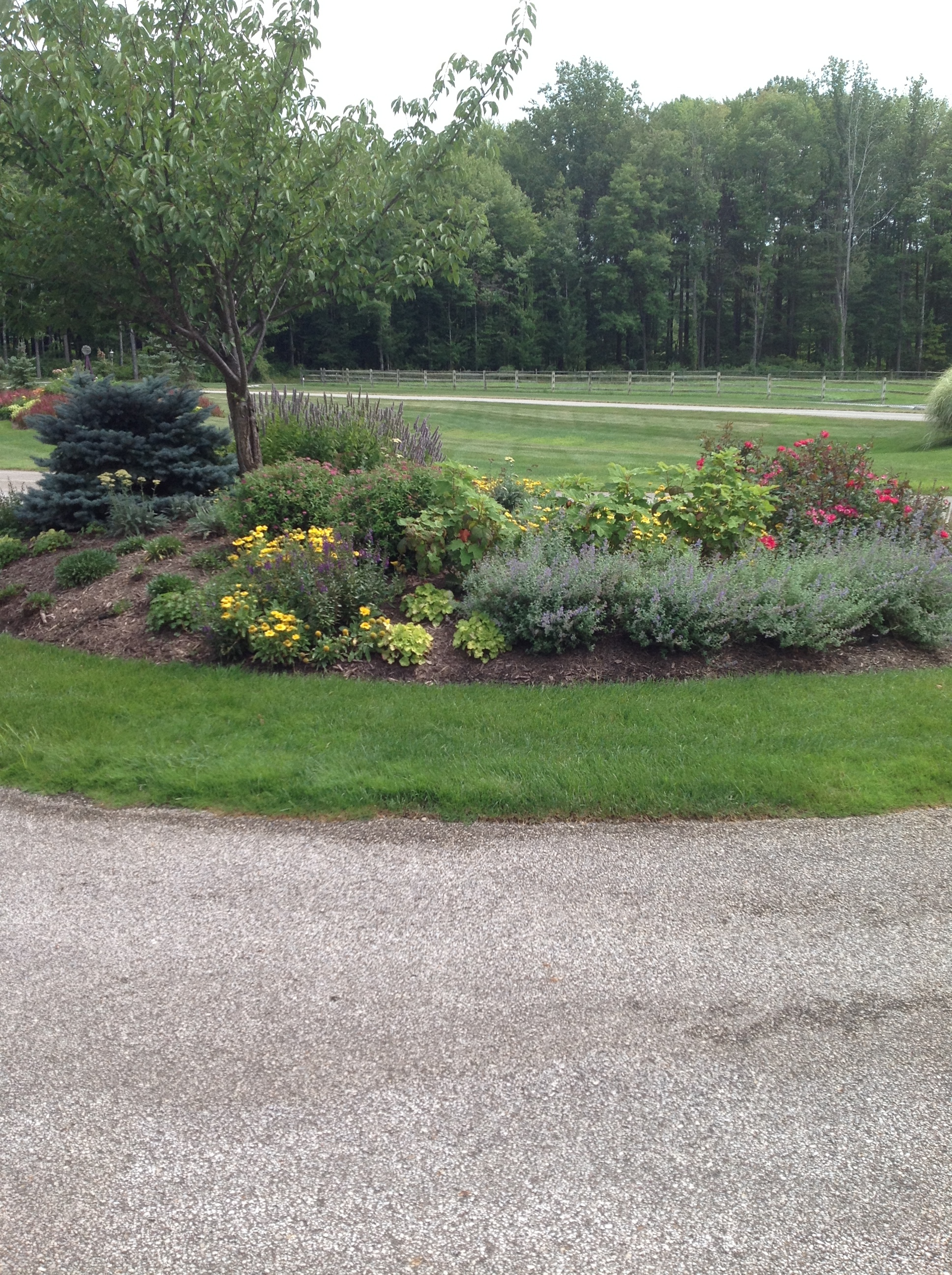Lawn Care Mistakes That Can Ruin Your Yard in Hudson, OH