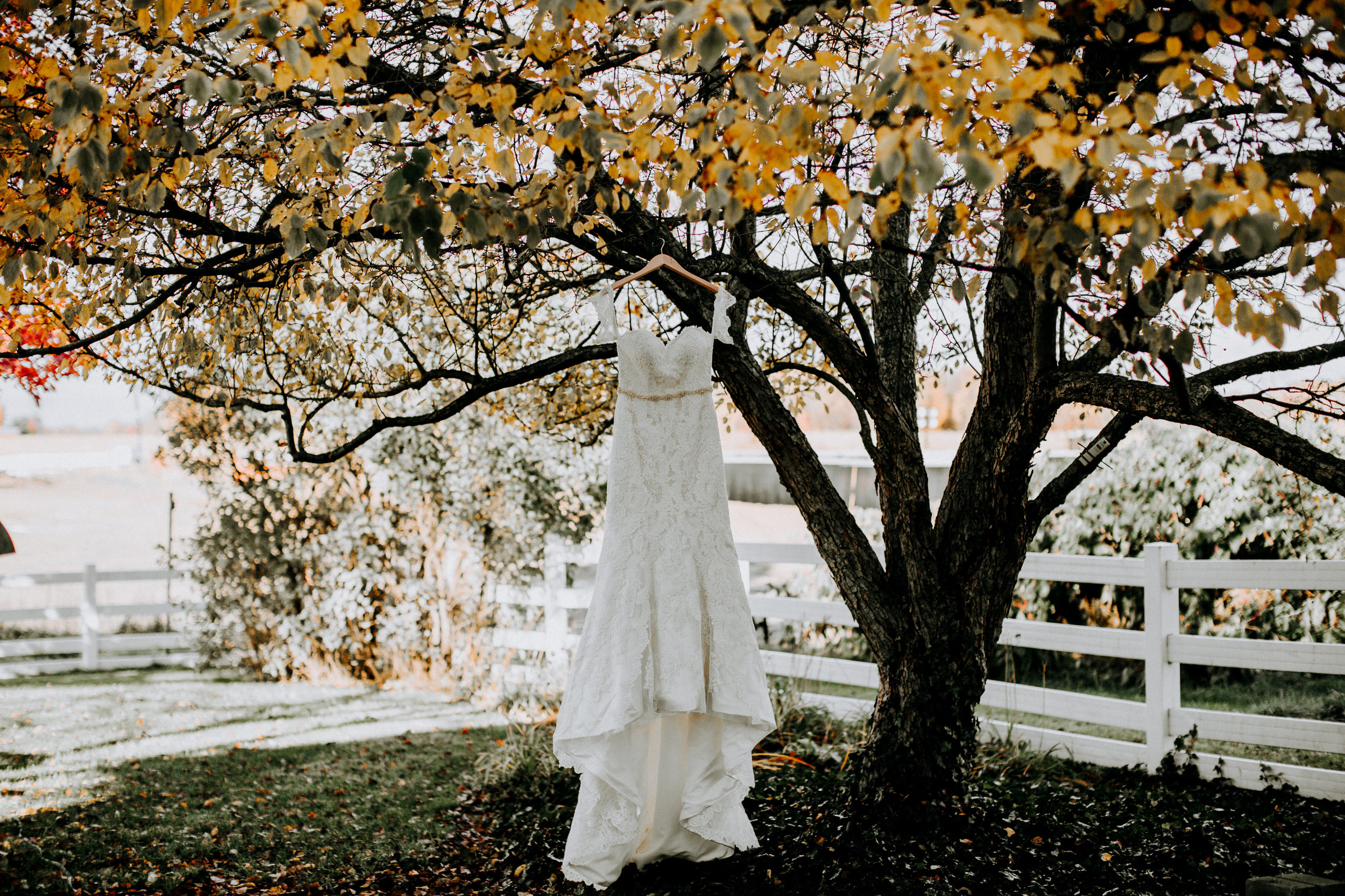 rustic wedding fall colors bridal dress picture.jpg