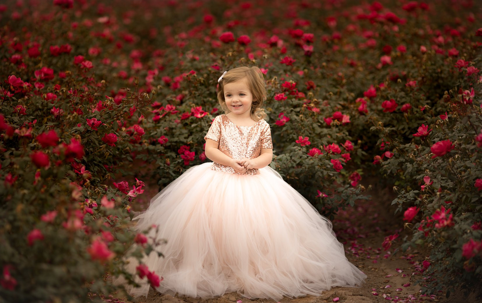 Blush Sequin Bodice and Blush Tulle - Flower Girl Tutu Dress,.jpg