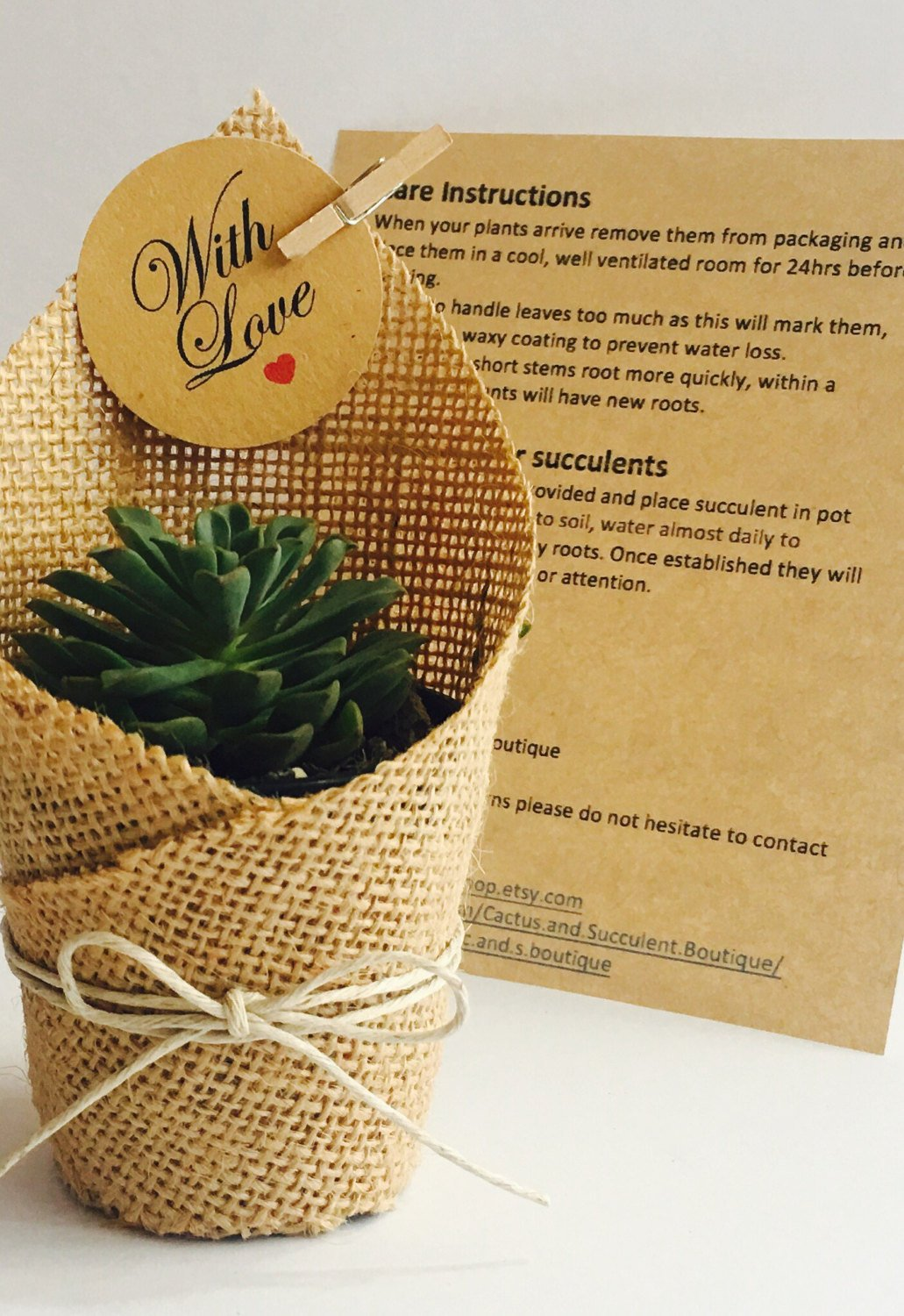 Succulent Favors Wrapped in Hessian.jpg