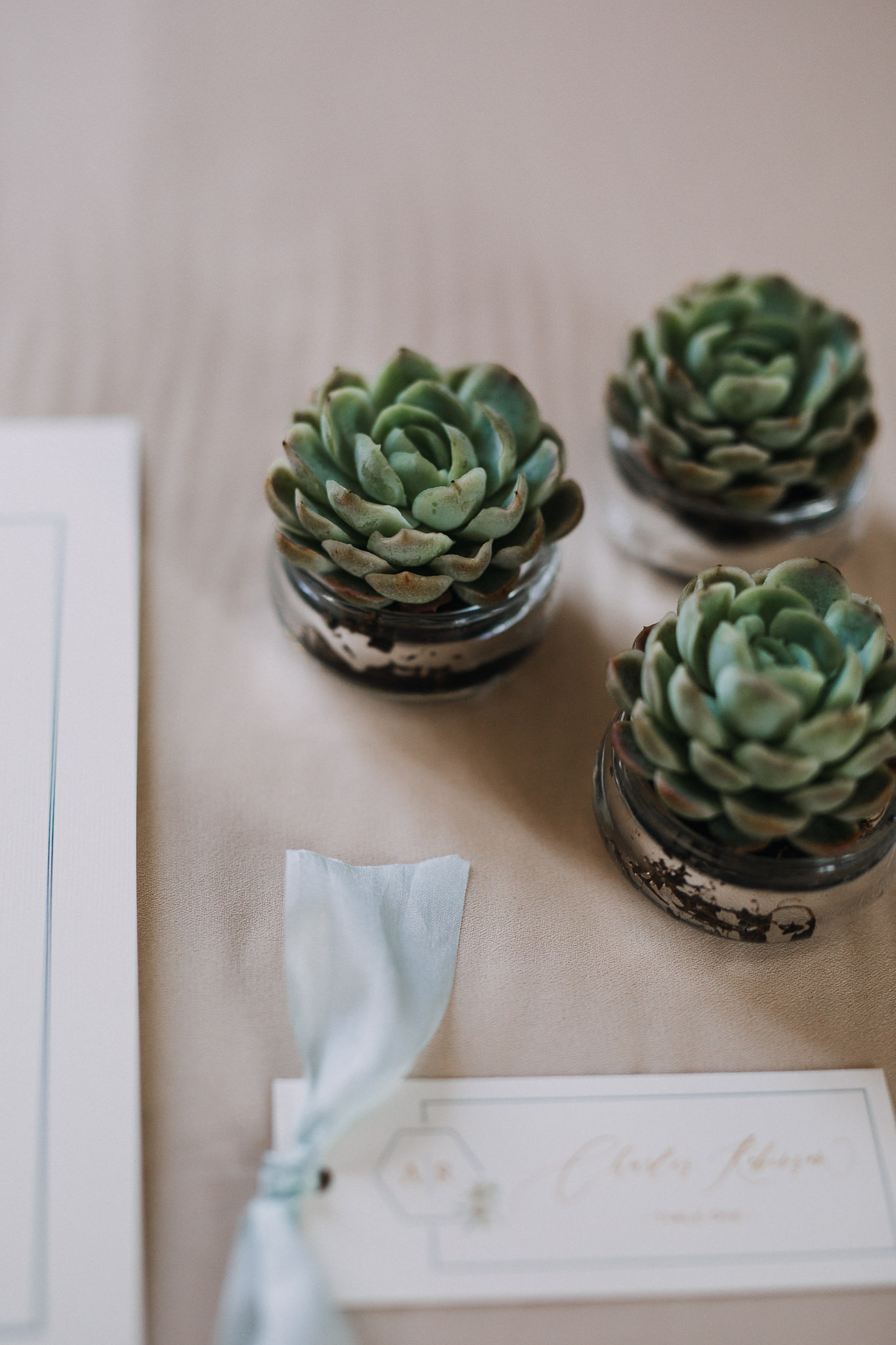 rustic wedding succulents.jpg