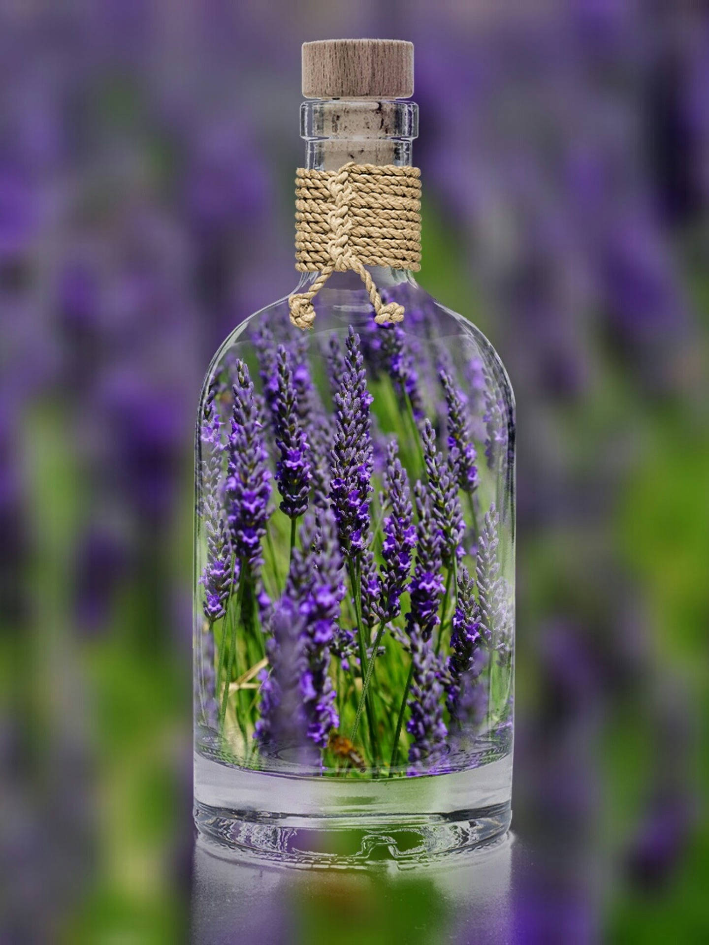 Lavender essential oil  Lavandula Angustifolia Flower oil  Aromatherapy  raw materials.jpg