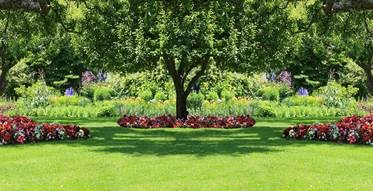 Shade Garden.jpg
