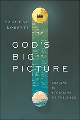 God's Big Picture - Vaughn Roberts