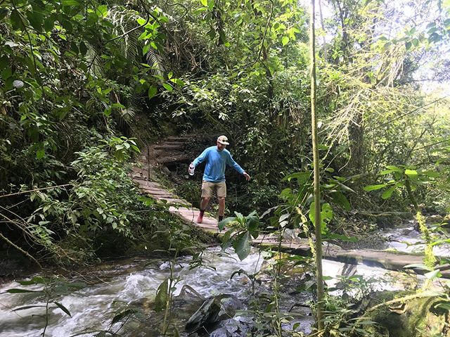 A story in photos: @bgorwitz carefully traversing through the tall trees of el Valle de Cocora to find the heart of your DM's 
