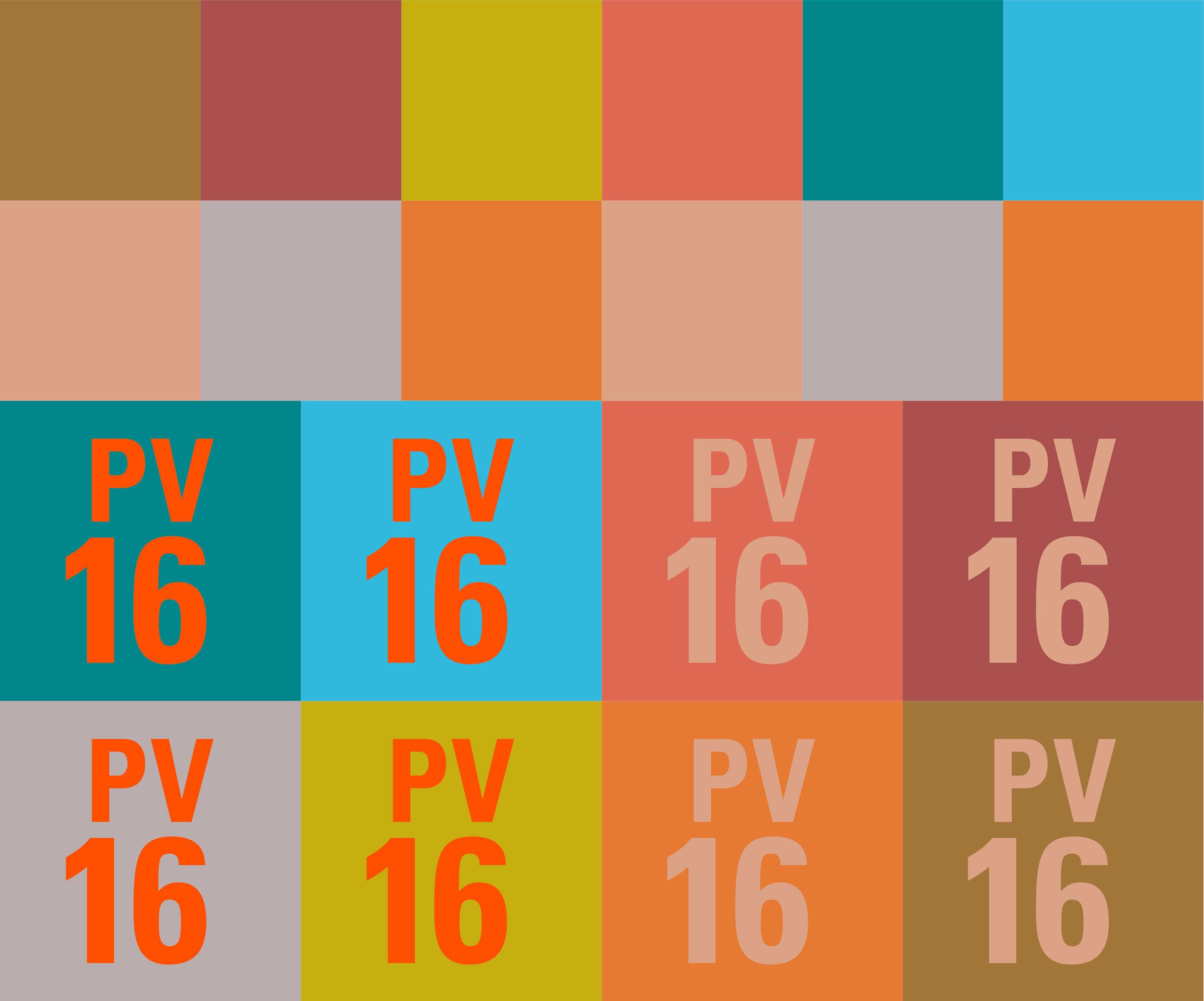 pv2016_portfolio_2016_color_palette_rgc.jpg
