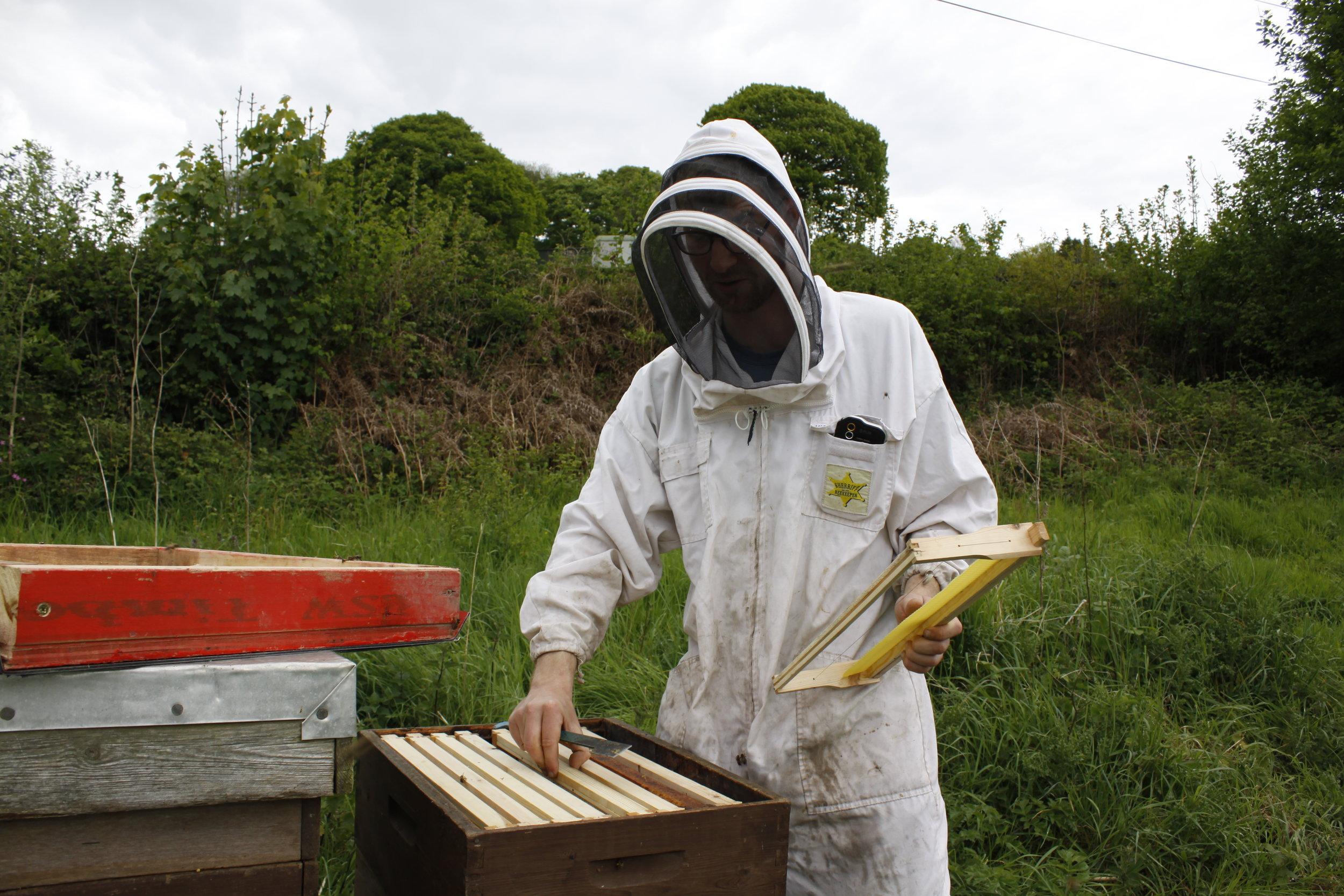 - Bee - keeping