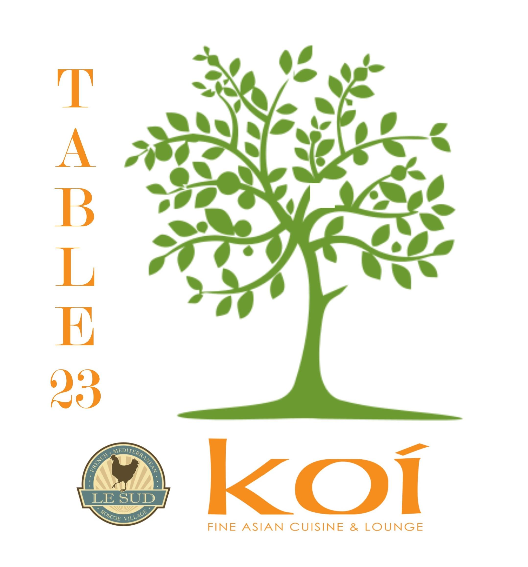 table23logokoilesud.jpg