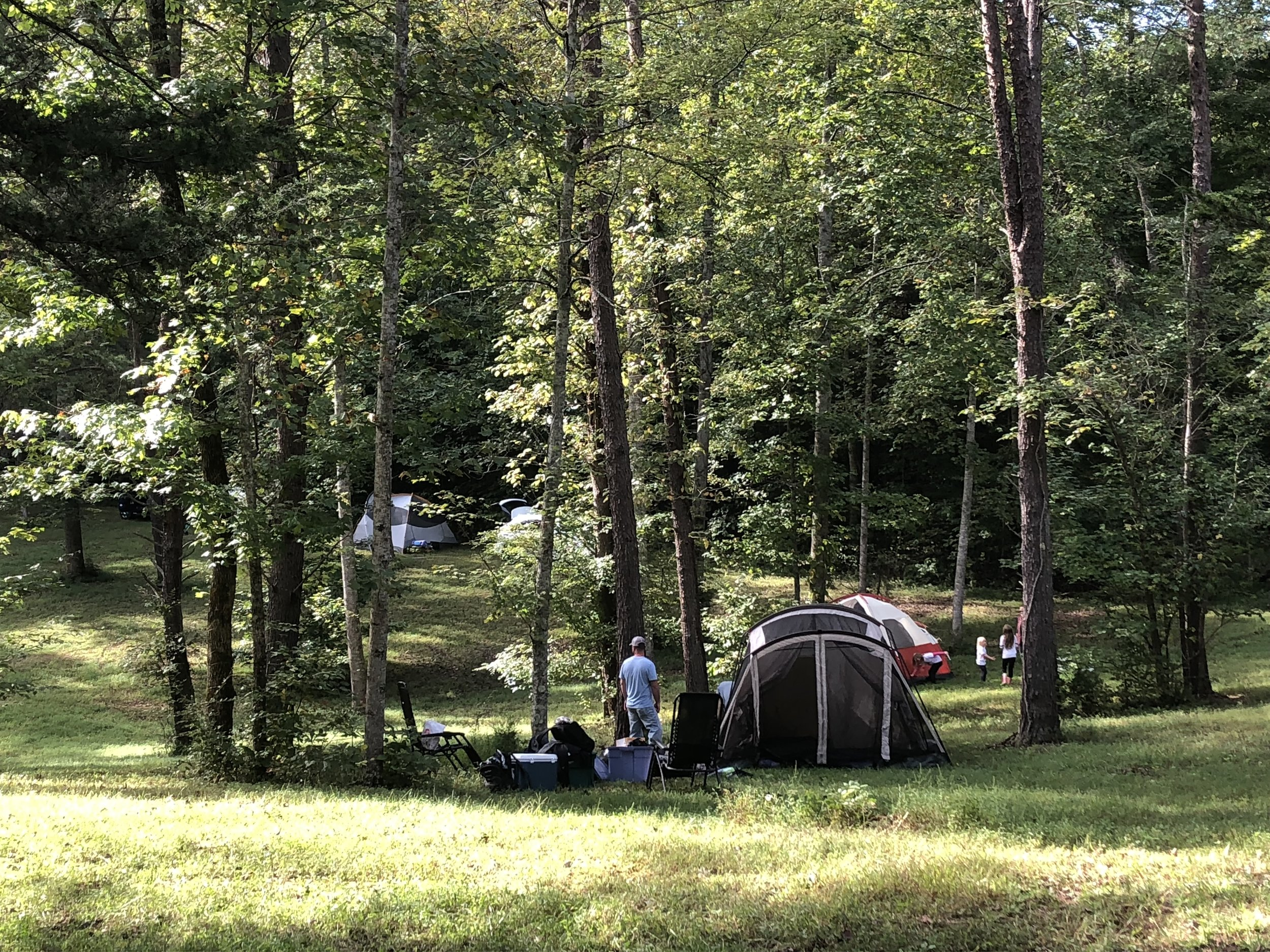 Copy of Tents Nestled in the Trees