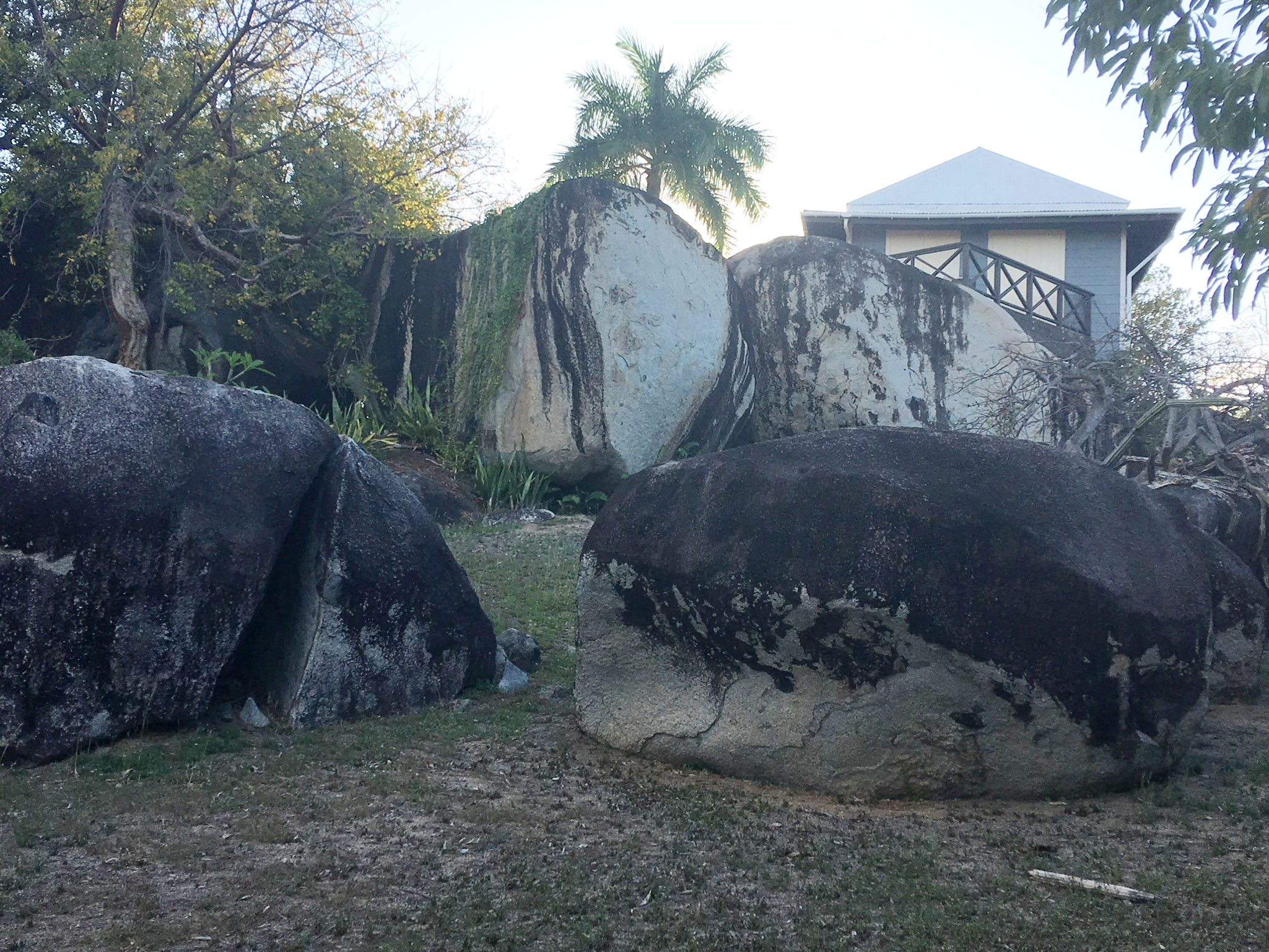 Boulders on the property