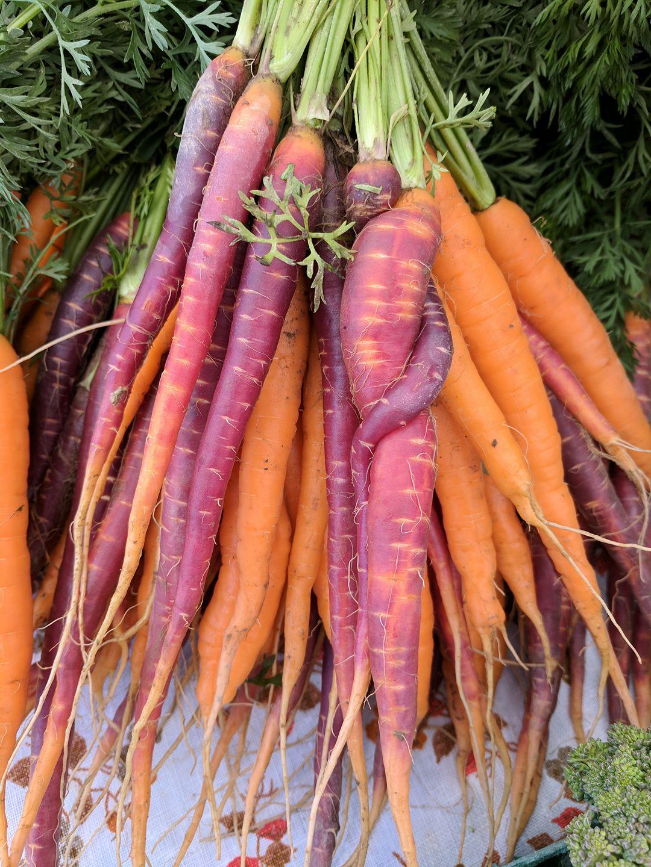 Carrot love.jpg
