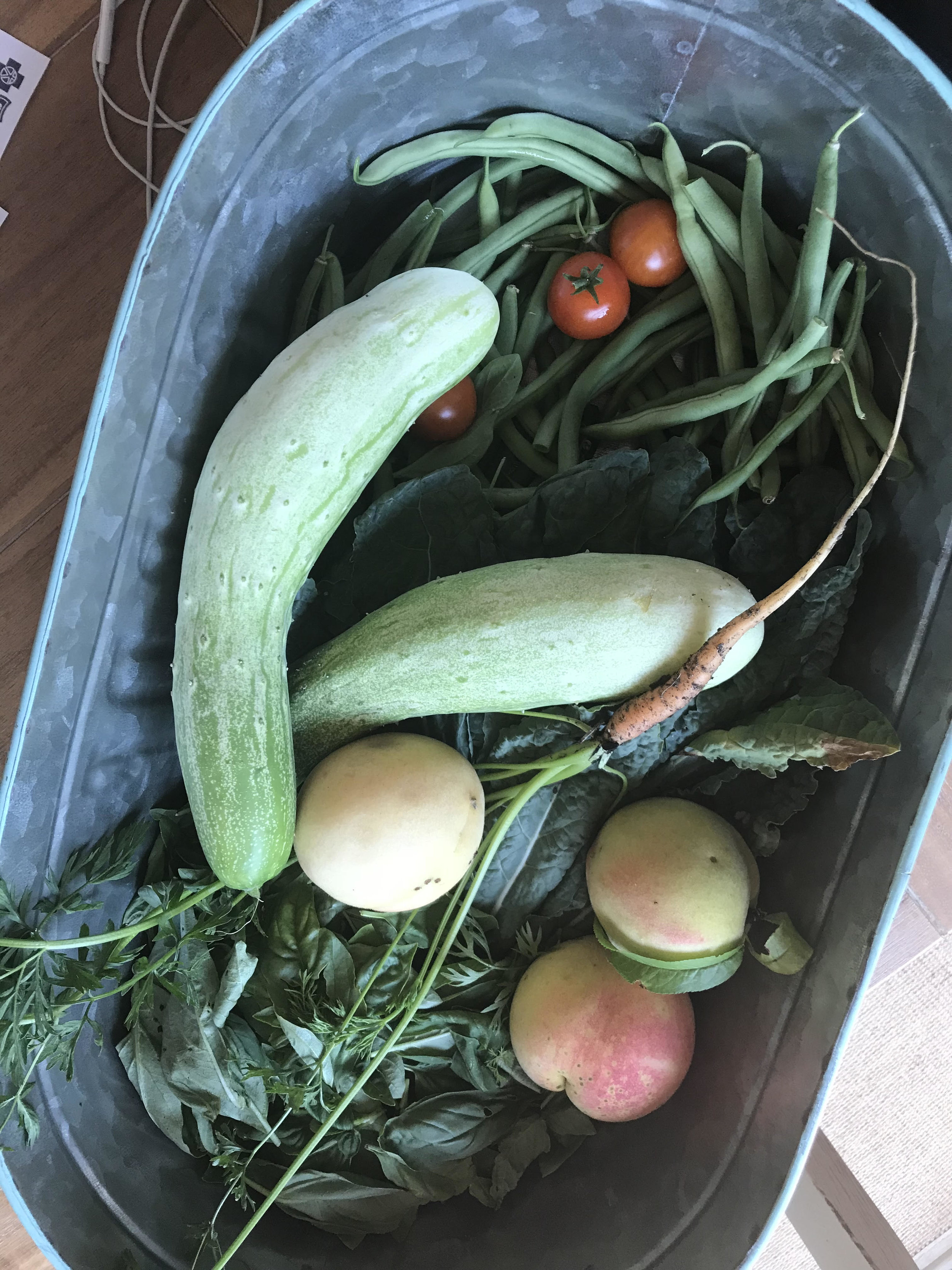 Garden Harvest 1.jpg