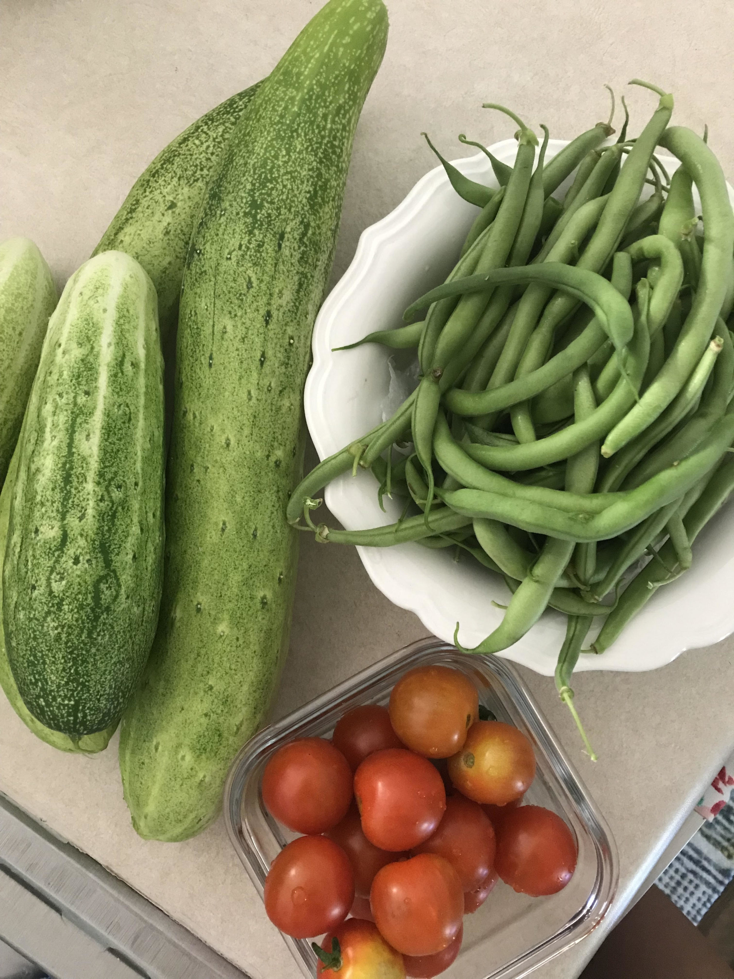 Garden Harvest 2.jpg